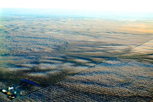Aerial view of the almond orchards in the foothills of eastern Stanislaus County, California.
