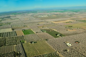 An aerial view of the patchwork of almond orchards in bloom in the Ripon area of San Joaquin County, California.