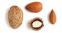 Mission almond