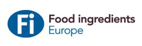 FI_Europe_Logo