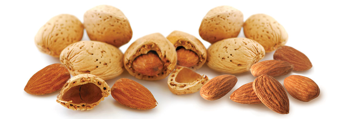 Whole almonds with shell