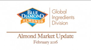 Feb Market Update