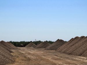 Stockpiled product accumulating at a sheller in the Durham area of Butte County