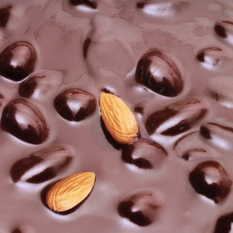 56297 Almonds_in_chocolate copy