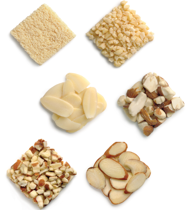 Article 2_almond-forms@2x